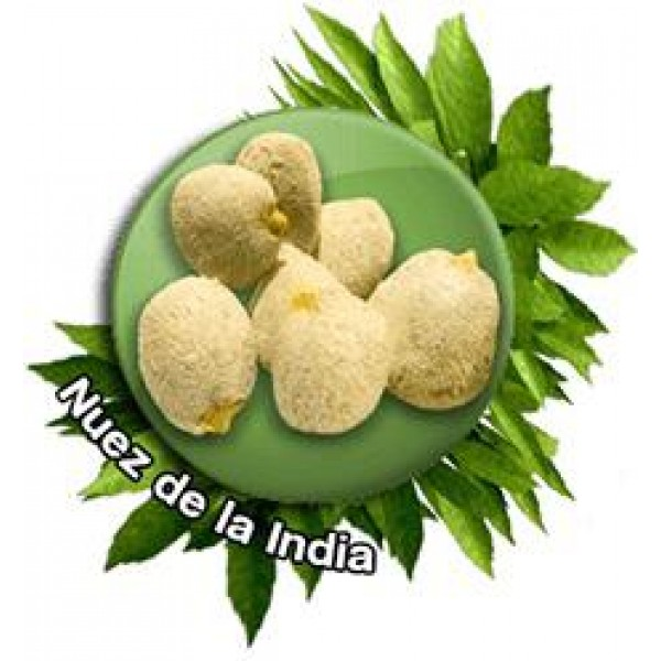 Nuez de la India